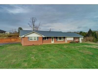 Hawkins County Single Family Home For Sale: 501 Maple Lane