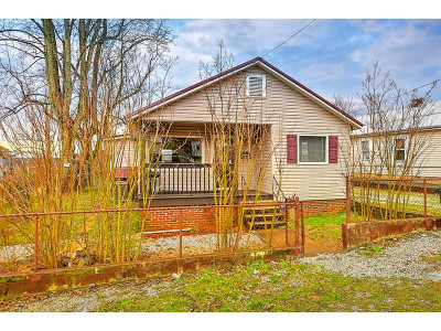 Kingsport Single Family Home For Sale: 1741 McGee St