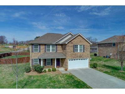 Greeneville Single Family Home For Sale: 503 Rayley Ct.