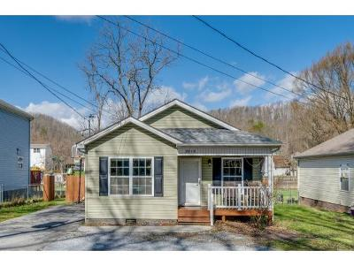 Johnson City Single Family Home For Sale: 2615 Watauga Road