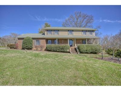 Johnson City Single Family Home For Sale: 5 Flo Ct