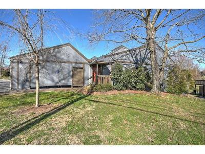 Kingsport Condo/Townhouse For Sale: 540F Fleetwood Court