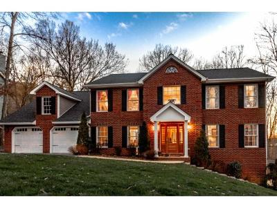 Kingsport Single Family Home For Sale: 1936 Fleetwood Drive