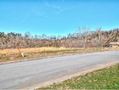 Piney Flats Residential Lots & Land For Sale: 1180 Reynolds Rd
