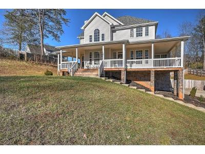 Bluff City Single Family Home For Sale: 101 Randall Laura Lane