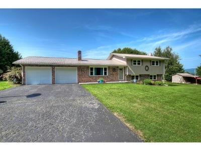 Elizabethton Single Family Home For Sale: 166 Flora Dugger Road