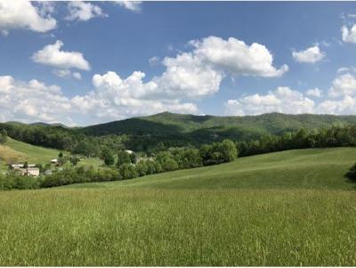 Johnson City Residential Lots & Land For Sale: Powder Branch