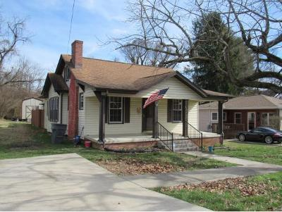 Bristol Single Family Home For Sale: 815 Marion Ave