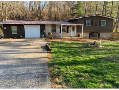 Single Family Home For Sale: 511 Highway 75