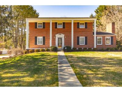 Bristol Single Family Home For Sale: 408 Overbrook Drive