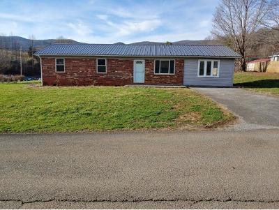 Elizabethton Single Family Home For Sale: 103 Winner