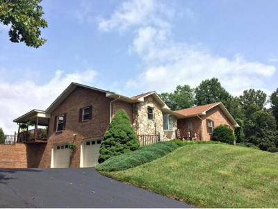 Bristol Single Family Home For Sale: 113 Fox Hall Circle