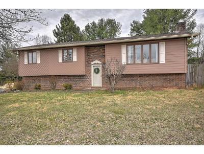 Johnson City Single Family Home For Sale: 2923 Newbern