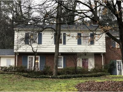 Johnson City Single Family Home For Sale: 302 Hillside Road