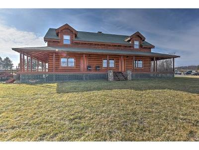 Piney Flats Single Family Home For Sale: 6430 Bristol Highway
