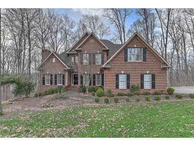 Kingsport Single Family Home For Sale: 4 Spring Creek Wynd