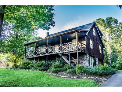 Greeneville Single Family Home For Sale: 225 Park Lane