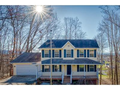 Piney Flats Single Family Home For Sale: 356 Webb Road