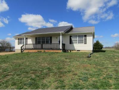 Chuckey Single Family Home For Sale: 8471 Erwin Hwy
