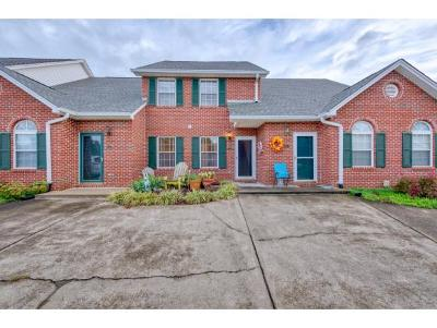 Blountville Condo/Townhouse For Sale: 142 Eagle View Pvt Dr #142