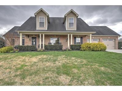 Johnson City Single Family Home For Sale: 1184 Broad Leaf Drive
