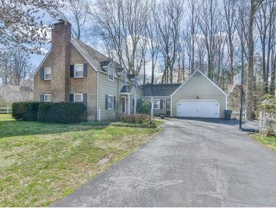 Bristol Single Family Home For Sale: 205 Sparkling Brook Drive