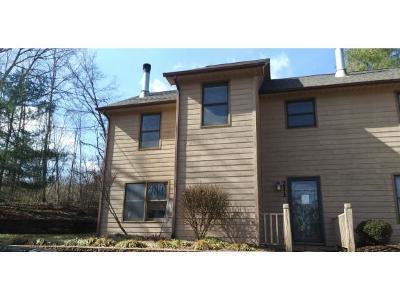 Johnson City Condo/Townhouse For Sale: 211 Windridge Colony #211
