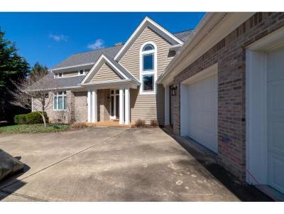 Bristol Single Family Home For Sale: 16083 Rocky Top Ridge