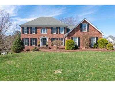 Abingdon Single Family Home For Sale: 800 Wingedfoot Crt.