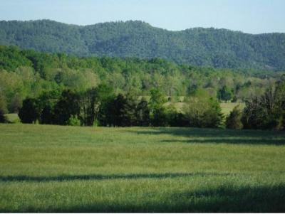 Greene County Residential Lots & Land For Sale: 1475 Crumley Road