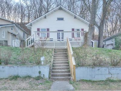 Johnson City Single Family Home For Sale: 308 E Chestnut