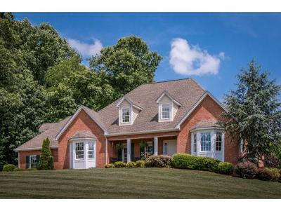 Abingdon Single Family Home For Sale: 25484 Watauga Road