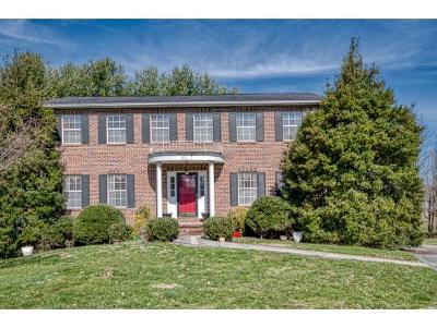Bristol Single Family Home For Sale: 105 Rachels Lane