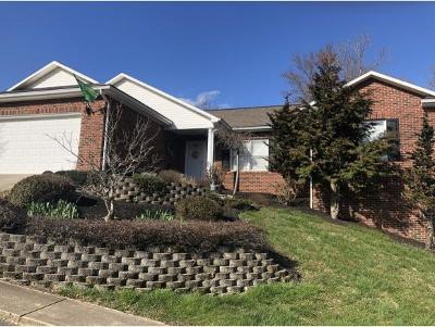 Greeneville Condo/Townhouse For Sale: 104 Keeneland Circle