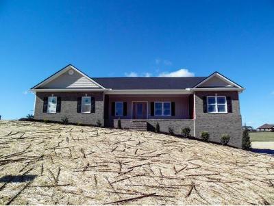 Jonesborough Single Family Home For Sale: 83 Serene Ct