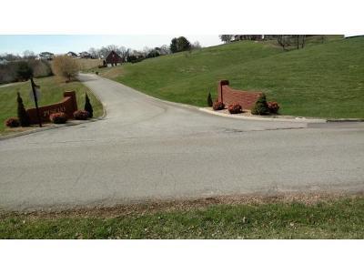 Hamblen County Residential Lots & Land For Sale: 4791 Leeann Drive