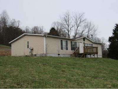 Single Family Home For Sale: 141 Dale View Dr