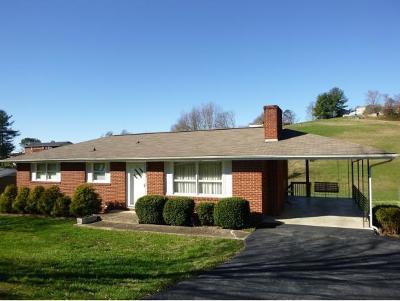 Single Family Home For Sale: 228 Darlington Drive