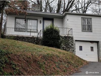 Kingsport Single Family Home For Sale: 582 Jackson Street