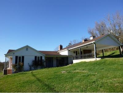 Piney Flats Single Family Home For Sale: 448 Geisler Road