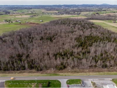 Greene County Residential Lots & Land For Sale: Erwin Hwy