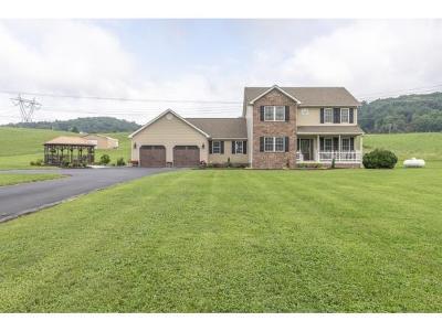 Abingdon Single Family Home For Sale: 25459 Watauga Road