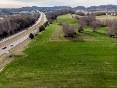 Greene County Residential Lots & Land For Sale: E Andrew Johnson Hwy
