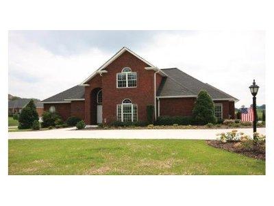 Bristol Single Family Home For Sale: 22784 Osprey Ridge Road
