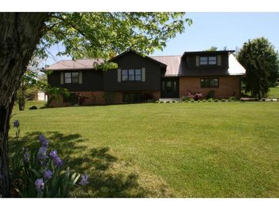 Single Family Home For Sale: 518 Ford Creek Road