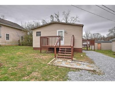 Johnson City Single Family Home For Sale: 1113 Lowell St.