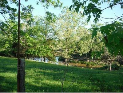 Greene County Residential Lots & Land For Sale: Baileyton Rd
