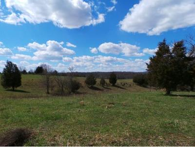 Greene County Residential Lots & Land For Sale: Baileyton Road