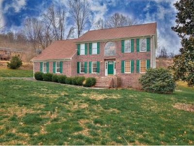 Elizabethton Single Family Home For Sale: 729 Ridgefield Rd