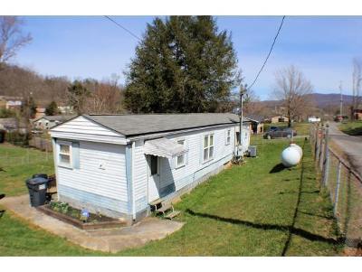 Elizabethton Single Family Home For Sale: 103 Payne